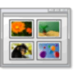 Automatic Image Downloader(多功能圖像采集器)